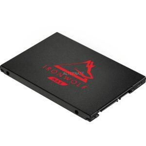 IronWolf 125 SSD 250 GB